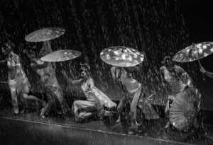 Circuit Merit Award e-certificate - D Agung Krisprimandoyo (Indonesia)  Dancing While Raining