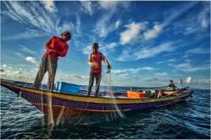 APAS Honor Mention e-certificate - Kim-Pheng Sim (Singapore)  Morning Fishing