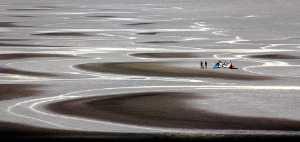 Circuit Merit Award e-certificate - Miranda Siu (Canada)  Low Tide Leisure Hours