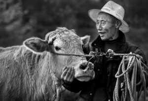 Circuit Merit Award e-certificate - Changyu Tong (China)  Old Man