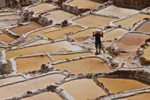 PhotoVivo Honor Mention e-certificate - Laurie Friedman (US Virgin Islands)  Maras Salt Pond Worker, Peru