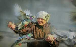 Circuit Merit Award e-certificate - Risheng Liu (China)  Pigeon Dance