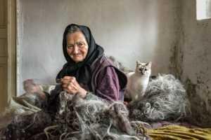 PhotoVivo Gold Medal - Michele Macinai (Italy)  Working The Wool 1