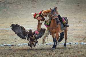 PhotoVivo Gold Medal - Chau Kei Checky Lam (Hong Kong)  Hunter And Eagle In One