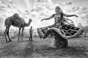 PhotoVivo Gold Medal - Tan Tong Toon (Malaysia)  Dances With Camels