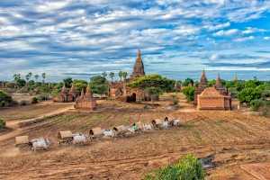 Circuit Merit E-cert - Thiha Zaw (Myanmar)  Travel By Ox Cart