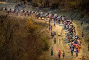 Circuit Merit Award e-certificate - Sai Ko Latt (Myanmar)  Myanmar Culture Fistable