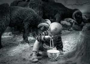 Circuit Merit Award e-certificate - Ping Cao (China)  Starving Child