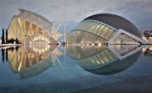 PhotoVivo Honor Mention e-certificate - Jose Maria Martin (Spain)  Twins