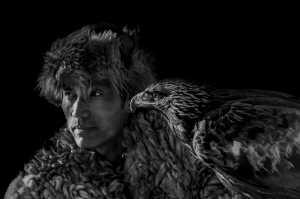 PhotoVivo Gold Medal - Dazhong Wang (China)  Falcon