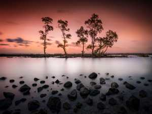 APAS Honor Mention e-certificate - Hsiang Hui (Sylvester) Wong (Malaysia)  Anyer Sunset 2