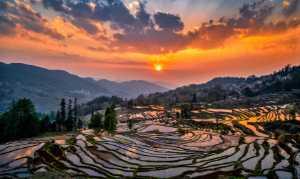 PhotoVivo Gold Medal - Katherine Wong (Canada)  Sunset At Rice Terrace