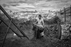 FIP Ribbon - Jenn Koh Yeok Kian (Malaysia)  Charcoal Kiln Worker 354