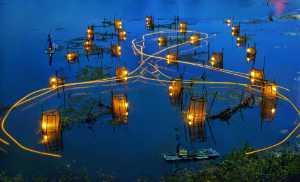 Circuit Merit Award e-certificate - Tong Hu (China)  Night In The Water