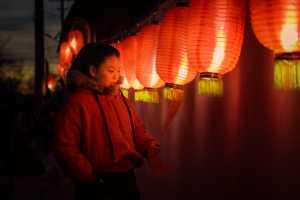 PhotoVivo Gold Medal - Shuxiang Li (China)  Spring Festival