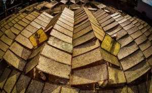 Raffles Photo Gold Medal - Thanh Cuong Phan (Vietnam)  Phoi Ca Kho