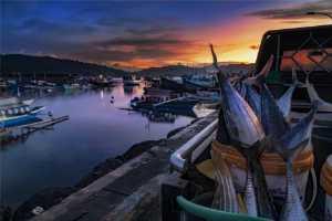 PhotoVivo Honor Mention - Chen Chong (China)  The Dawn Of The Fishing Market