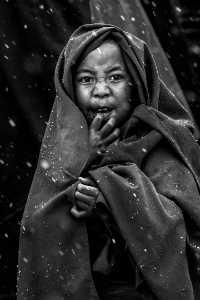 PhotoVivo Gold Medal - Yong Lin (China)  Little Monk 1