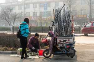 PhotoVivo Gold Medal - Xianliang Peng (China)  Sell Sugar Canes