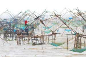 Circuit Merit Award e-certificate - Chong Kit Han (Malaysia)  Bamboo Net Fishing