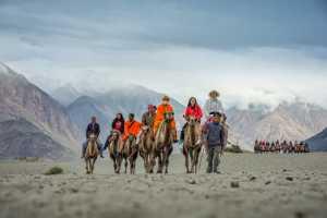 PhotoVivo Gold Medal - Saurabh Sirohiya (India)  Tourist Ride On Bactrian Camels