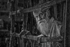 PhotoVivo Gold Medal - Shehan Trek (Sri Lanka)  Rainy Day