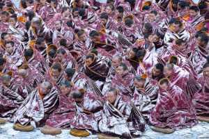 FIP Ribbon - Jinyi Zhang (China)  Listening In Snow 44