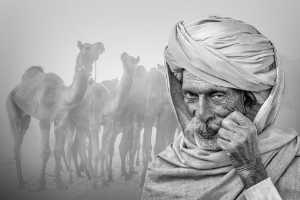 PhotoVivo Gold Medal - Saurabh Sirohiya (India)  The Pride Of Pushkar