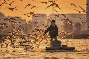 Circuit Merit Award e-certificate - Rongmao Yang (China)  Fisherman's Shadow