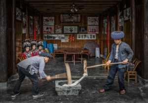 PhotoVivo Gold Medal - Chengdou Wang (China)  Hit