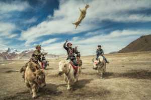 Best 100 Collection - Guoyun Zhang (China)  Rob Sheep Race 15