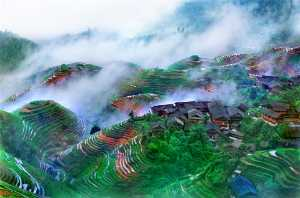 PhotoVivo Gold Medal - Tong Hu (China)  Mist Mountain Village