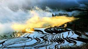 PhotoVivo Gold Medal - Sui Liu (China)  Morning Light On The Terraces