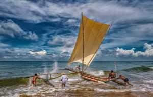 ICPE Gold Medal - Pandula Bandara (Sri Lanka)  Into The Sea 3