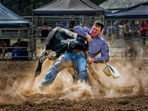 APU Gold Medal - Graeme Watson (Australia)  Bull By The Horns
