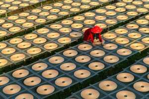 PSA HM Ribbons - Ka Chon Chiang (Macau)  Red And Circle