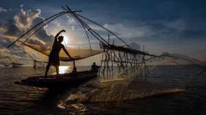 SIPC Merit Award - Tat Seng Ong (Malaysia)  Fishing