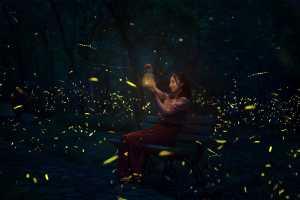 PhotoVivo Gold Medal - Chiyu Yu (China)  Fireflies In Linggu Temple