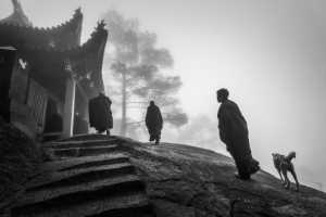PhotoVivo Gold Medal - Weining Lin (China)  Holy