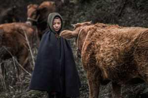 PhotoVivo Gold Medal - Jian Zhong (China)  Cowboy