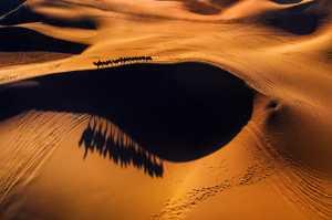 PhotoVivo Gold Medal - Jianguo Bai (China)  Desert Travel 5