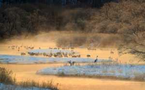 APU Gold Medal - Katie Mak (Canada)  Setsuri River At Dawn