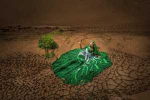 Circuit Merit Award e-certificate - Jianguo Bai (China)  Beauty In Desert 3