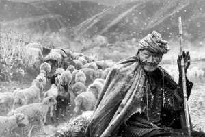 Raffles Photo Gold Medal - Arnaldo Paulo Che (Hong Kong)  The Sheepherder 1
