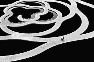 Golden Dragon Photo Award - Sau Yan Jackson Lee (Hong Kong) - Walking Around
