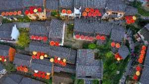 APU Honor Mention e-certificate - Aizhen Jiang (China)  Autumn In The Countryside