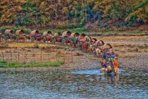ICPE Gold Medal - Ye Chit Paing (Myanmar)  Myanmar Travel Festival