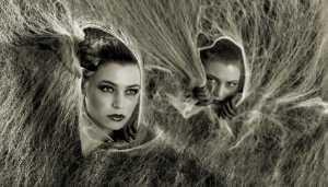 PhotoVivo Gold Medal - Zee Kek Heng (Singapore)  Two Spider Ladies