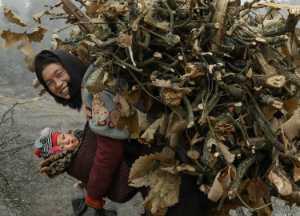 PhotoVivo Gold Medal - Jun Luo (China)  Happy Mother