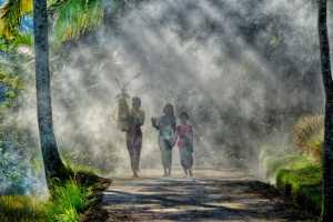 Best 100 Collection - Gek Koon Roger Khoo (Singapore)  Bali Sisters Walking